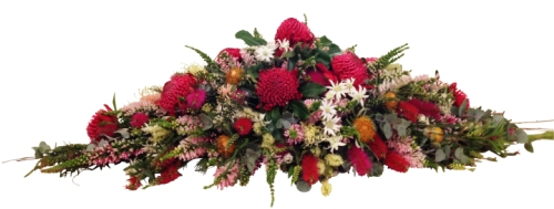 Waratah and wild flower tribute