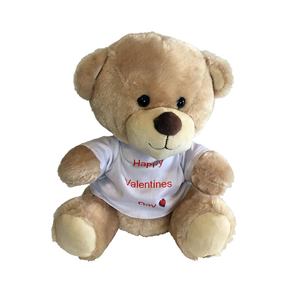 Happy Valentine`s Day Bear
