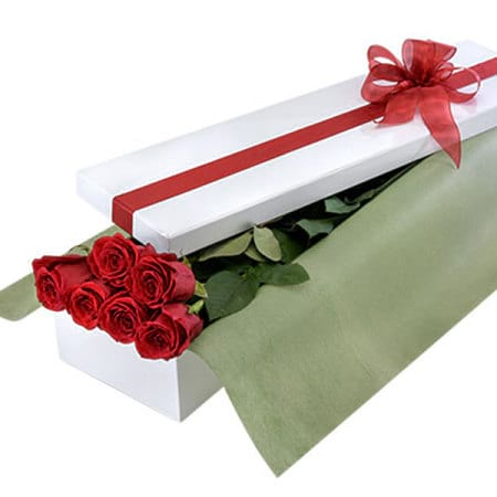 Red Rose Box of Six Long Stemmed Red Roses