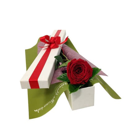 Perfect Red Rose in Elegant Rose Box