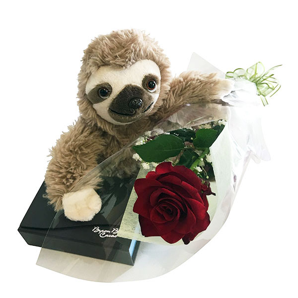 Sammy the Sloth, Red Rose and Chocolates Package